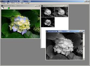 CTView_JPEG.jpg, SIZE:877x650(283.2KB)